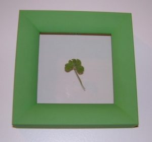 Down To Earth Art Gallery - 4 Leaf Clover
